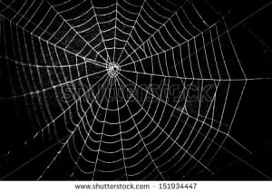 stock-photo-pretty-scary-frightening-spider-web-for-halloween-151934447
